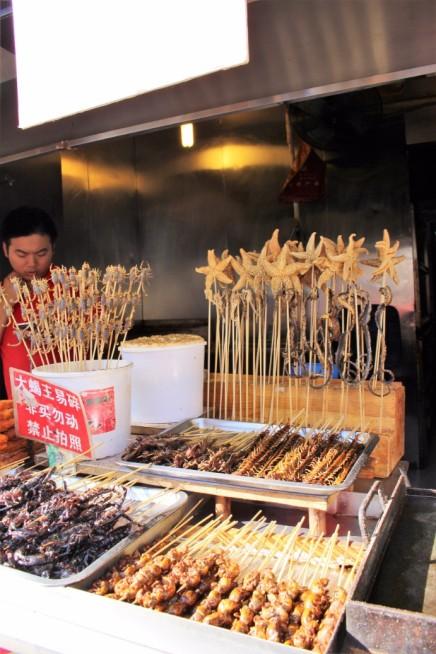 Beijing Travel Blog (13)