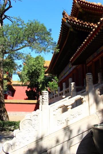 Beijing Travel Blog (32)