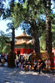Beijing Travel Blog (33)