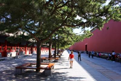 Beijing Travel Blog (34)