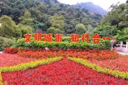 Guiyang and Chengdu China Travel Blog (2)