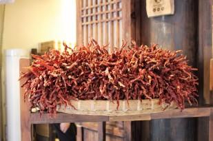 Guiyang and Chengdu China Travel Blog (50)