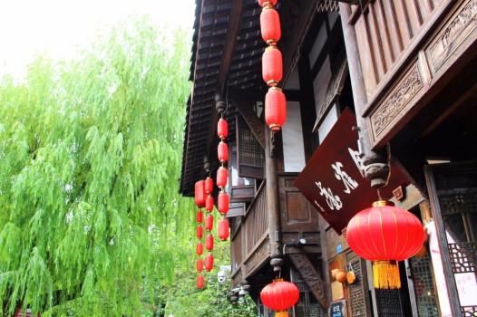 Guiyang and Chengdu China Travel Blog (56)
