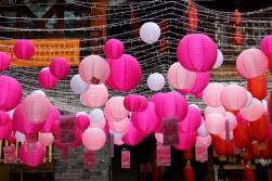 Guiyang and Chengdu China Travel Blog (63)