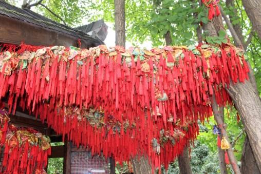 Guiyang and Chengdu China Travel Blog (70)