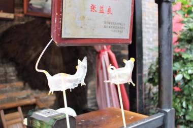 Guiyang and Chengdu China Travel Blog (72)