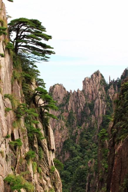 Huangshan Travel Blog (17)