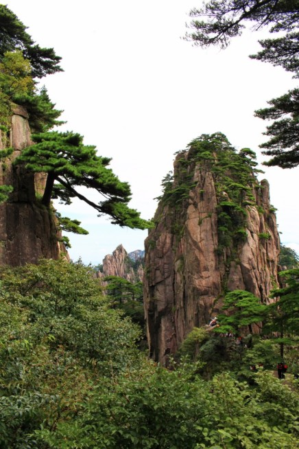 Huangshan Travel Blog (18)