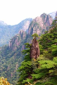 Huangshan Travel Blog (32)