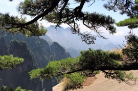 Huangshan Travel Blog (37)