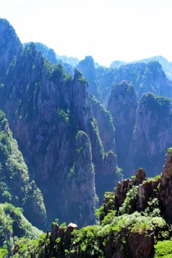 Huangshan Travel Blog (38)