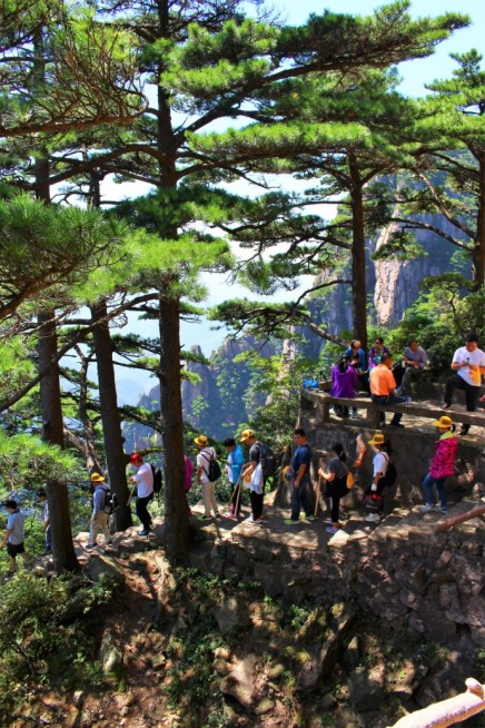 Huangshan Travel Blog (42)