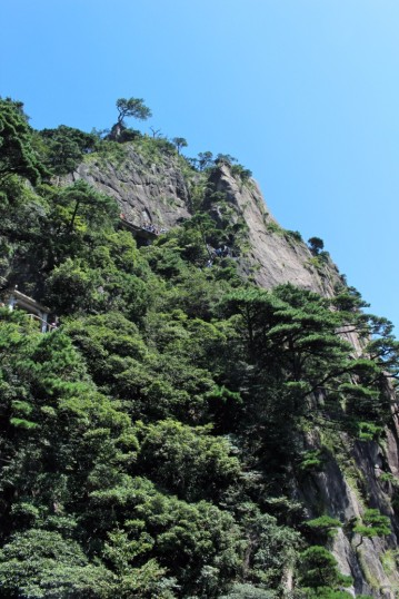 Huangshan Travel Blog (45)