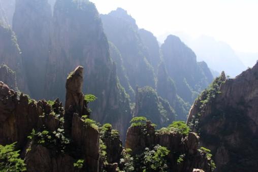 Huangshan Travel Blog (46)