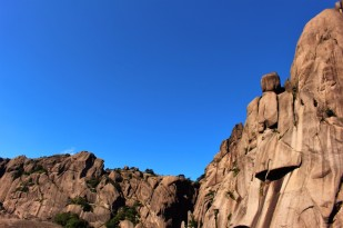 Huangshan Travel Blog (62)