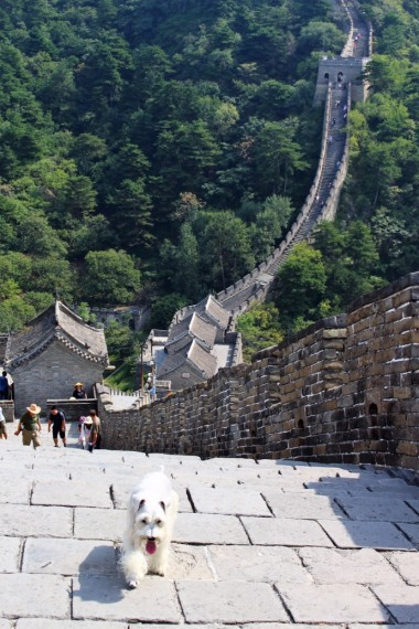 The Great Wall Travel Blog (35)