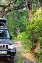 Sri Lanka Travel Itinerary 2 (70)