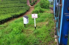 Sri Lanka Travel Itinerary 4 (107)