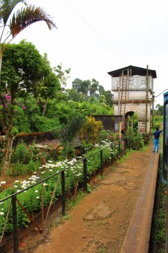 Sri Lanka Travel Itinerary 4 (109)
