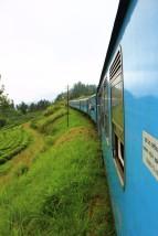Sri Lanka Travel Itinerary 4 (111)