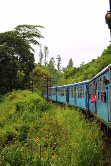 Sri Lanka Travel Itinerary 4 (122)