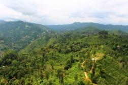 Sri Lanka Travel Itinerary 4 (20)