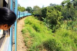 Sri Lanka Travel Itinerary 4 (28)
