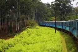 Sri Lanka Travel Itinerary 4 (56)