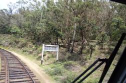 Sri Lanka Travel Itinerary 4 (61)