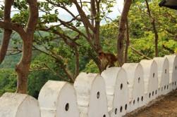 Sri Lanka Travel Itinerary 5 (102)
