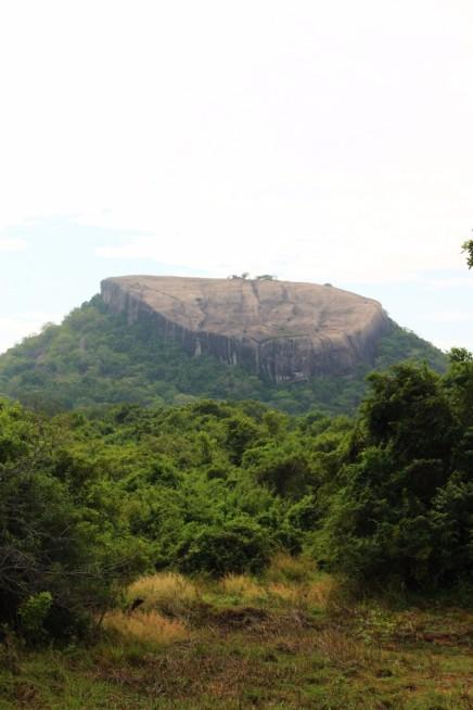 Sri Lanka Travel Itinerary 5 (110)