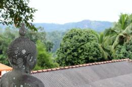 Sri Lanka Travel Itinerary 5 (26)