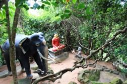 Sri Lanka Travel Itinerary 5 (31)