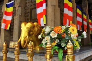Sri Lanka Travel Itinerary 5 (68)