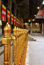 Sri Lanka Travel Itinerary 5 (69)
