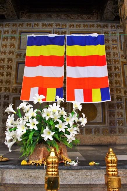 Sri Lanka Travel Itinerary 5 (70)