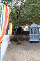 Sri Lanka Travel Itinerary 5 (82)