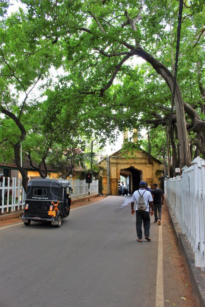 Sri Lanka Travel Itinerary 6 (11)