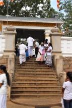 Sri Lanka Travel Itinerary 6 (36)