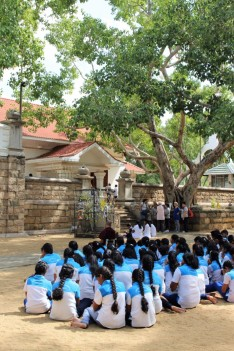 Sri Lanka Travel Itinerary 6 (44)