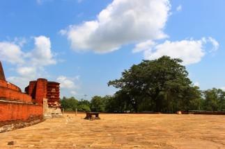 Sri Lanka Travel Itinerary 6 (52)
