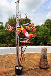 Sri Lanka Travel Itinerary 6 (85)