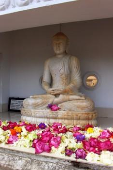 Sri Lanka Travel Itinerary 6 (95)