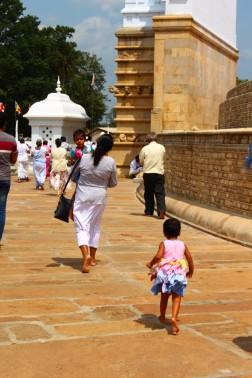 Sri Lanka Travel Itinerary 6 (96)