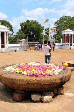 Sri Lanka Travel Itinerary 6 (98)