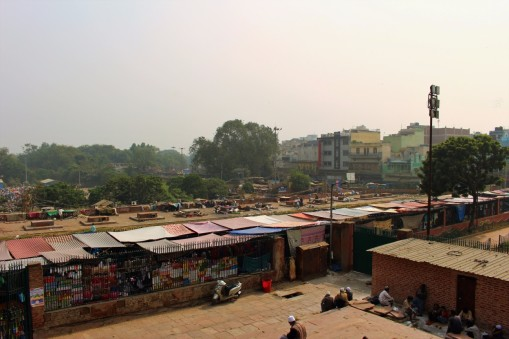 Golden Triangle India Travel Blog (10)