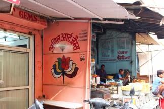Golden Triangle India Travel Blog (102)