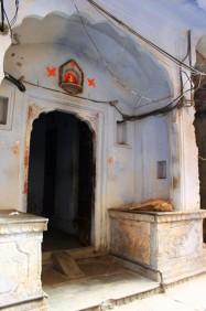 Golden Triangle India Travel Blog (107)