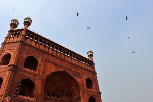 Golden Triangle India Travel Blog (11)