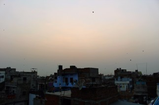 Golden Triangle India Travel Blog (115)
